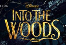 Into the Woods, un banner per il nuovo musical della Disney