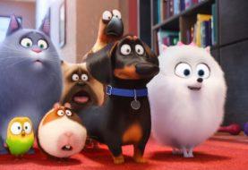 Pets - Vita da animali - Recensione
