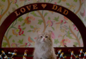 Una vita da gatto - Recensione